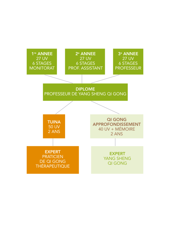 parcours_formation_Qi_Gong-formation-professionnelle_qi_gong